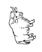 Mucca e bufalo da colorare 61