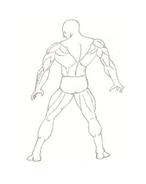 Corpo umano da colorare 65
