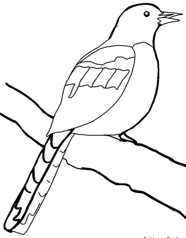 Uccello da colorare 192
