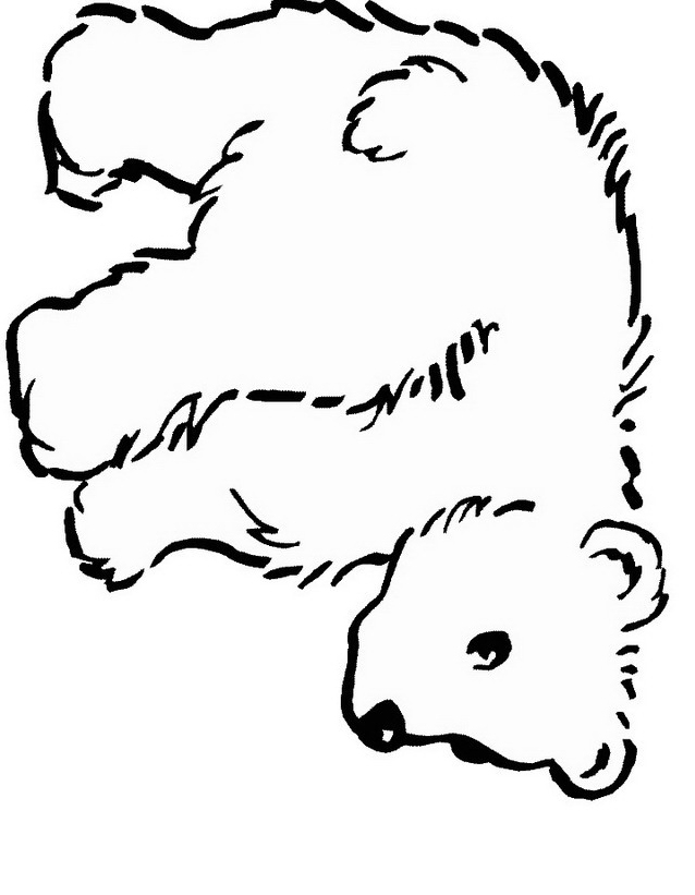 Orso da colorare 124