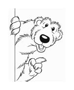 Orso bear da colorare 2