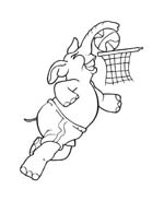 Basketball da colorare 52