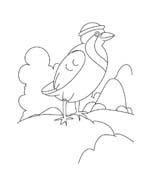Uccello da colorare 195