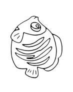 Pesce da colorare 78
