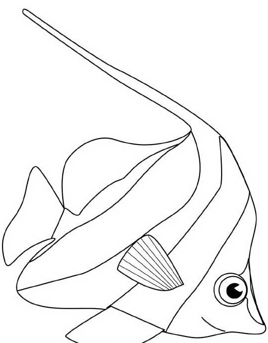 Pesce da colorare 83