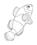 Pesce da colorare 92