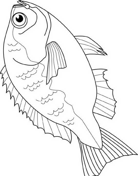 Pesce da colorare 99