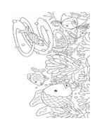 Pesce da colorare 105