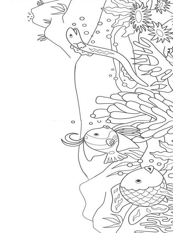 Pesce da colorare 107