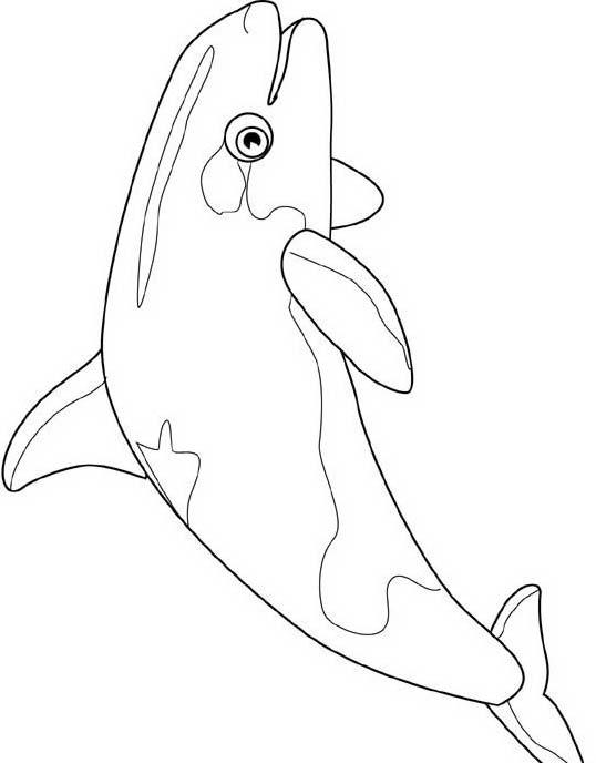 Pesce da colorare 123