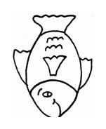 Pesce da colorare 137