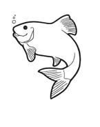 Pesce da colorare 146