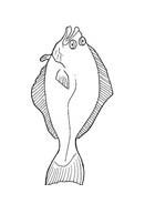 Pesce da colorare 180