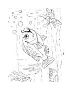 Pesce da colorare 191