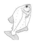 Pesce da colorare 196