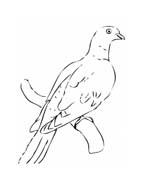 Uccello da colorare 203