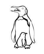 Pinguino da colorare 29