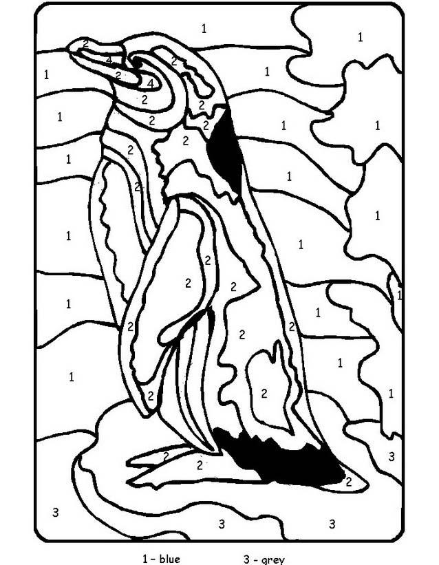 Pinguino da colorare 31