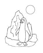 Pinguino da colorare 33
