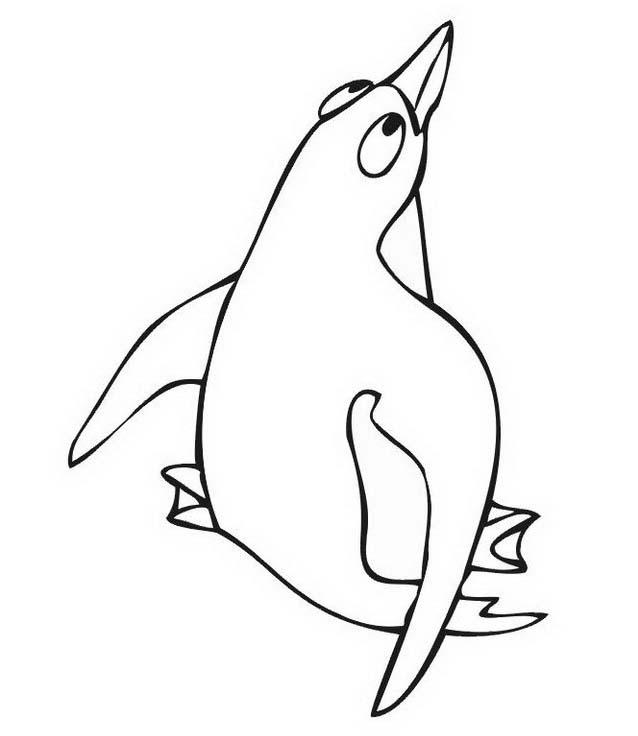 Pinguino da colorare 49