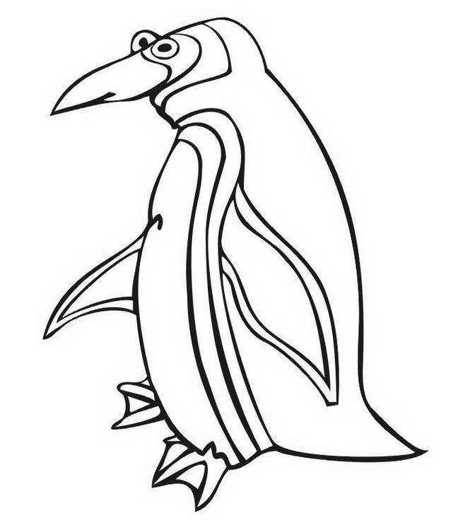 Pinguino da colorare 50