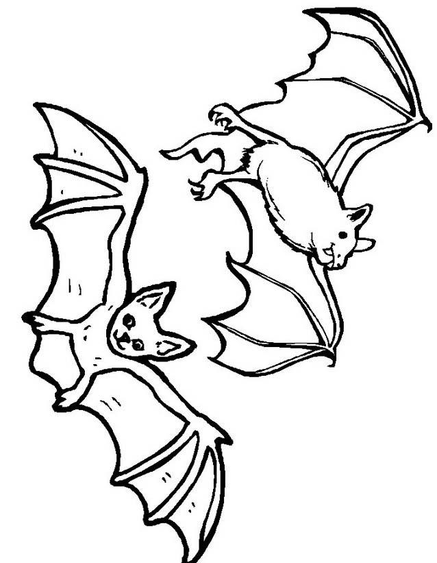 Pipistrello da colorare 21