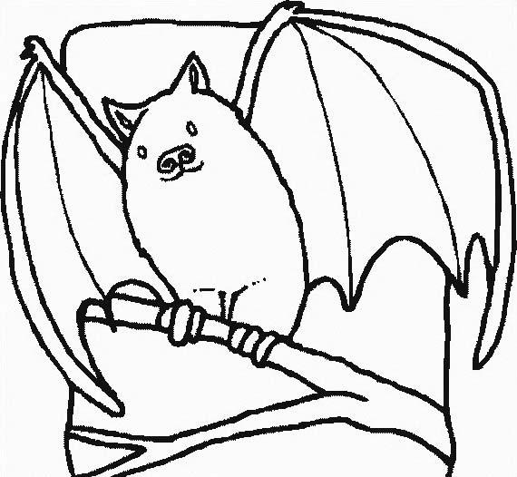 Pipistrello da colorare 23