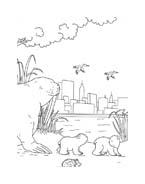 Piuma il piccolo orsetto polare da colorare 26