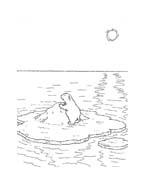 Piuma il piccolo orsetto polare da colorare 39