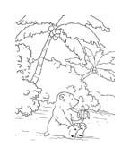 Piuma il piccolo orsetto polare da colorare 46