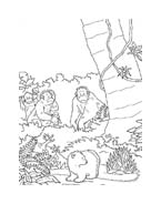 Piuma il piccolo orsetto polare da colorare 49