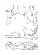 Piuma il piccolo orsetto polare da colorare 50