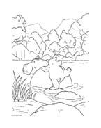 Piuma il piccolo orsetto polare da colorare 52
