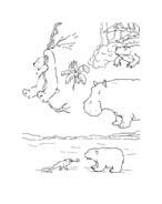 Piuma il piccolo orsetto polare da colorare 84