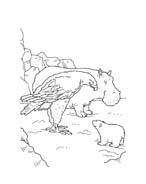 Piuma il piccolo orsetto polare da colorare 89