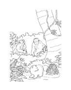 Piuma il piccolo orsetto polare da colorare 95