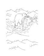 Piuma il piccolo orsetto polare da colorare 102