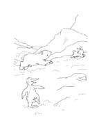 Piuma il piccolo orsetto polare da colorare 111
