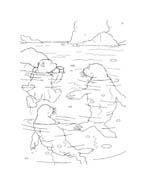 Piuma il piccolo orsetto polare da colorare 112