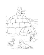 Piuma il piccolo orsetto polare da colorare 113