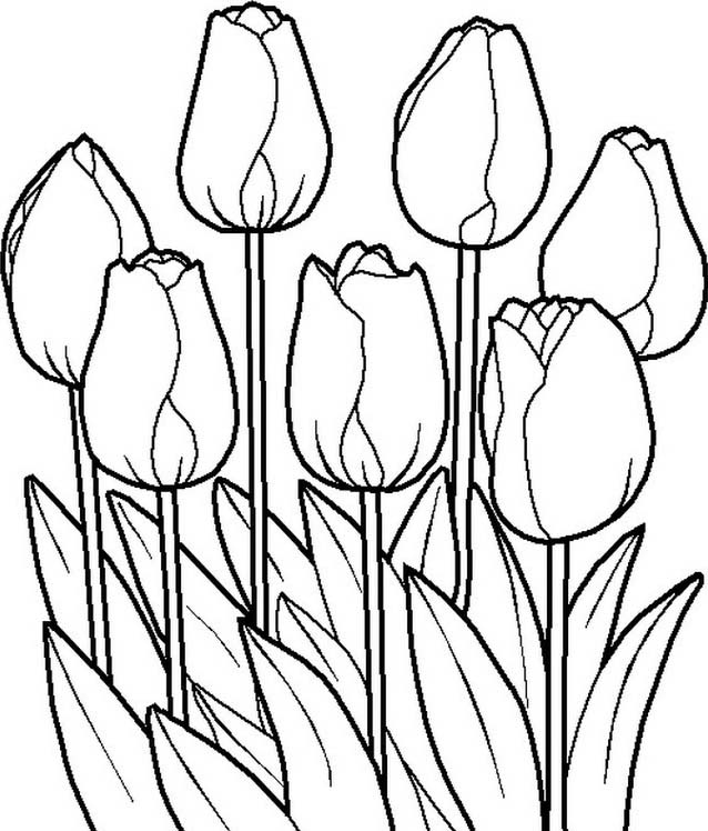 Primavera da colorare 83