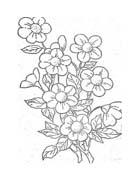Fiore da colorare 343