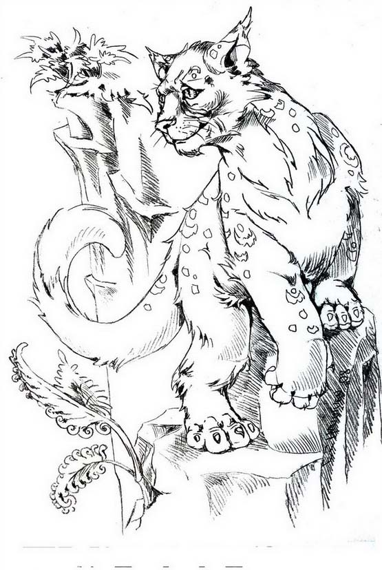 Tigre da colorare 50