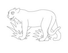 Tigre da colorare 51