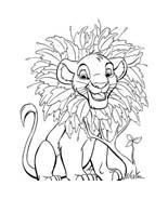 Il re leone da colorare 52