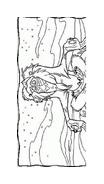 Il re leone da colorare 91