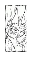 Il re leone da colorare 117