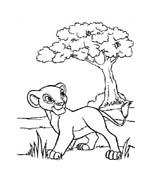 Il re leone da colorare 134
