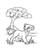 Il re leone da colorare 153