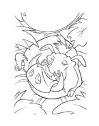 Il re leone da colorare 168